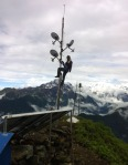 relay tower cambium